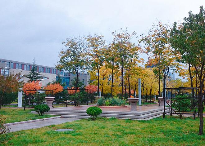 四季景色秋